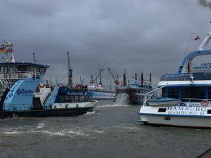 Wuseln auf der Elbe